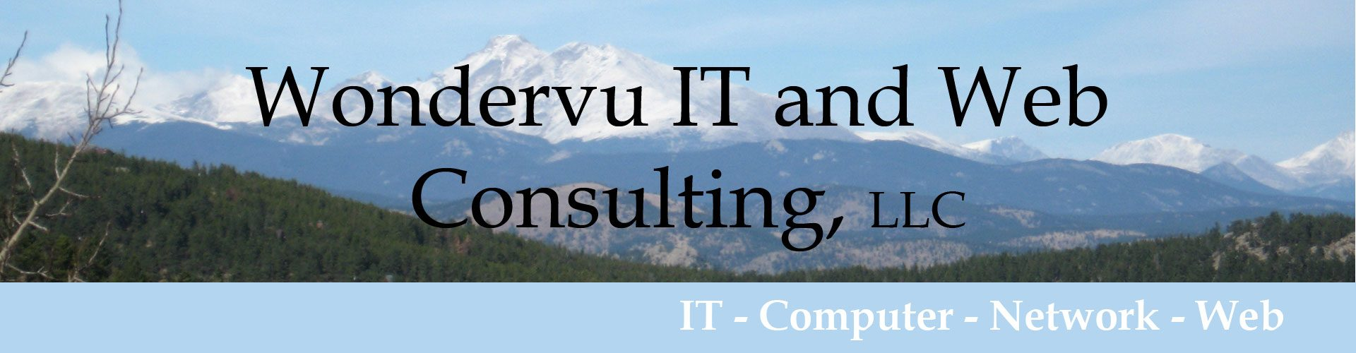 Wondervu IT and Web Consulting Services